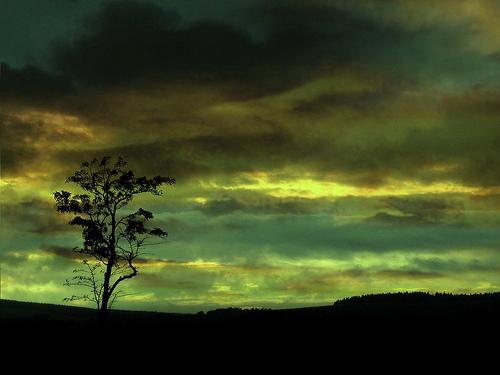 Greenhouse effect photo