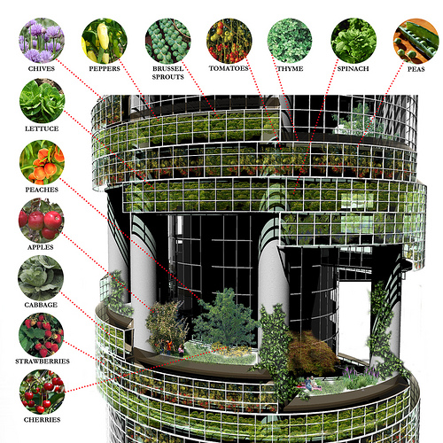 vertical farming photo