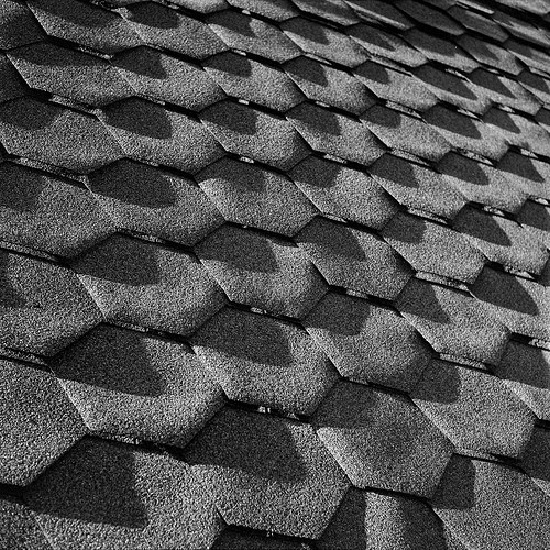 asphalt shingles photo