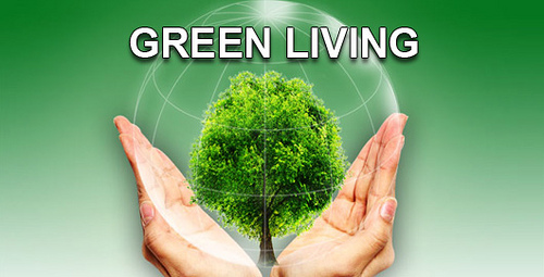 Green Living photo