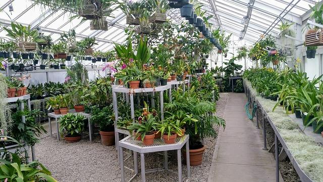 Conservatory photo