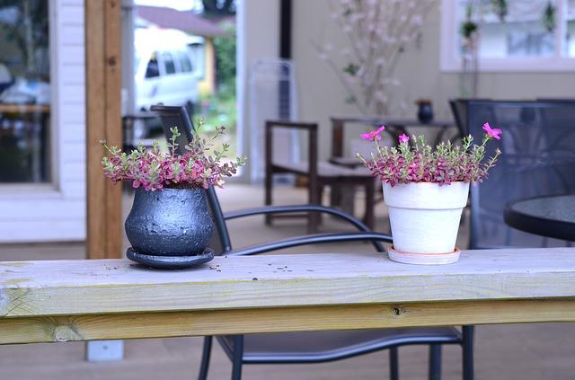 mini gardens photo