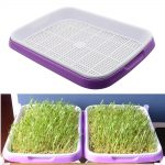 Double Layer Bean Sprouts <b>Hydroponic</b> tray Seedling Tray Planting Dishes Growing Vegetables seedlings <b>Garden</b> Nursery Pots 1 Set